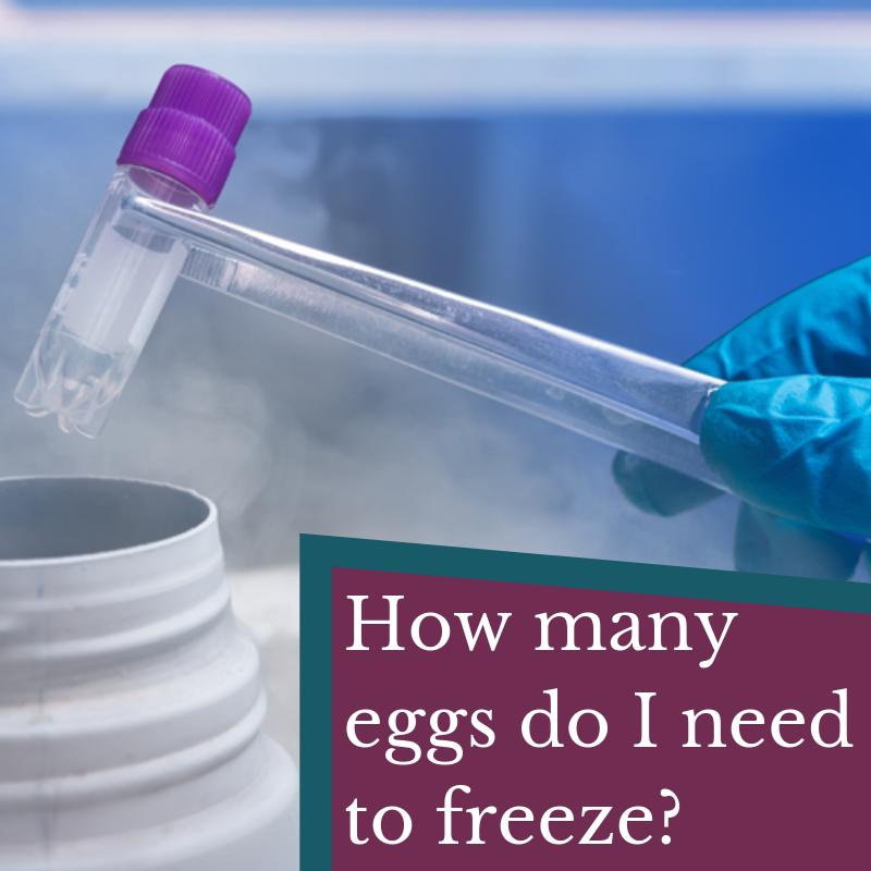 How many Eggs Do I Need to Freeze?