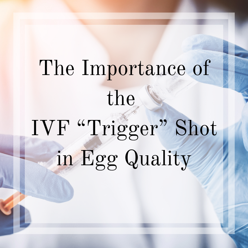 "The Importance of the IVF ""Trigger"" Shot in Egg Quality"